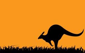 Обои абстракция, кенгуру, силуэт, трава, небо