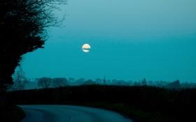 Картинка дорога, небо, облака, деревья, луна