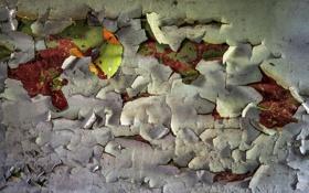 Картинка фон, текстура, стена