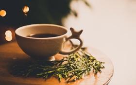 Обои трава, растение, кружка, чашка, напиток