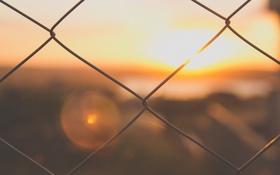 Обои небо, закат, забор, ограда, прутья