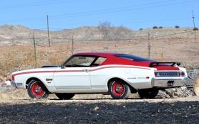 Обои 1969, вид сзади, Muscle car, Мускул кар, Mercury, Меркури, Cyclone