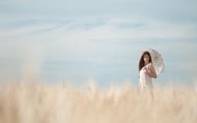 Обои поле, небо, взгляд, девушка, макро, лицо, зонтик