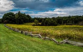 Картинка ограда, поле, деревья
