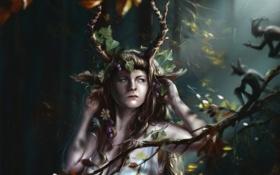 Картинка лес, девушка, цветы, животное, ветка, фэнтези, арт