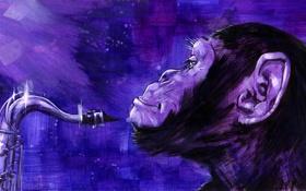 Обои арт, обезьяна, art, саксофон
