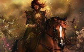 Обои всадница, блеск, искры, Девушка, конь, перо