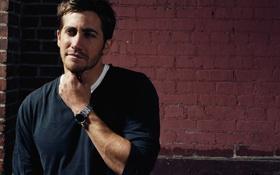 Обои актёр, красивый мужчина, jake gyllenhaal, джейк джилленхол
