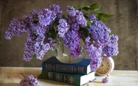 Картинка часы, сирень, книги, цветы
