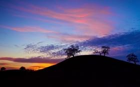 Картинка небо, облака, деревья, закат, холмы, вечер, слуеты