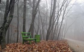 Картинка дорога, осень, листья, туман, скамья