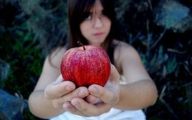 Обои фон, девушка, яблоко