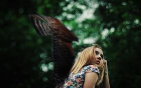 Картинка девушка, настроение, птица, боке