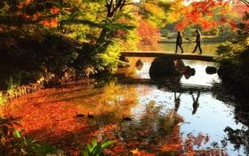 Картинка пейзаж, осень, вода, листья, люди, деревья, мостик
