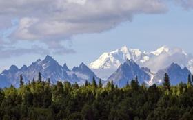 Картинка лес, облака, снег, горы, гряда