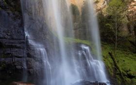 Обои USA, США, Штат Орегон, Silver Falls State Park, State Oregon, Marion County, Округ Мэрион