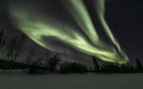 Картинка зима, небо, звезды, ночь, северное сияние, Северная Канада