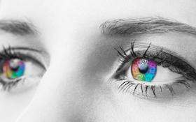 Обои глаза, цвета, макро, ресницы, черно-белая, радуга