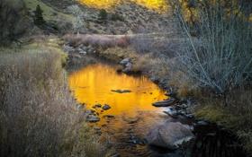 Обои осень, трава, река, ручей, камни, склон