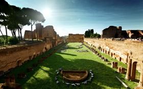 Картинка небо, солнце, деревья, тень, Рим, Колизей, Италия