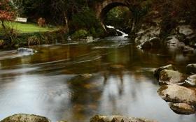 Картинка мост, парк, река, камни