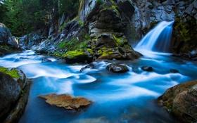 Обои лес, деревья, река, ручей, камни, водопад, Waterfall