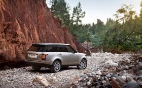 Обои серебристый, внедорожник, Ренж Ровер, скала, самни, деревья, Range Rover