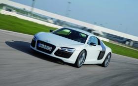 Обои Audi, Ауди, Белый, Машина, спорткар, В движении, R 8