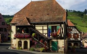 Обои цветы, дом, Франция, поля, особняк, Haut-Rhin