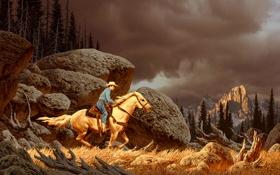 Картинка лес, пейзаж, тучи, камни, скалы, конь, лошадь
