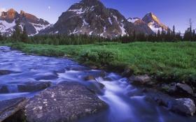Картинка камни, река, небо, поток, лес, деревья, природа