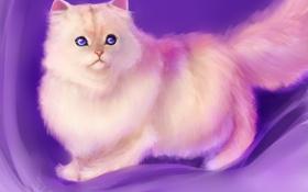 Обои арт, пушистая, фон, кошка