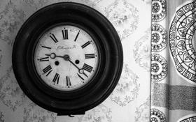 Картинка стена, часы, черно-белое, циферблат, настенные