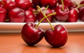 Обои фрукты, черешня, веточки