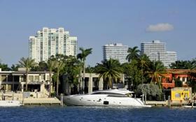 Картинка море, пальмы, побережье, дома, Майами, яхта, Флорида
