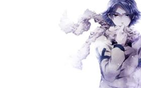 Картинка снег, шарф, Парень, гетерохромия