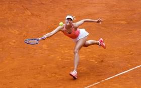 Обои спорт, теннис, корт, Sharapova