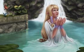 Картинка девушка, птицы, озеро, руки, арт, водопады, The Legend of Zelda