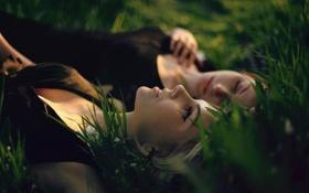 Обои поле, лето, трава, девушки, отдых
