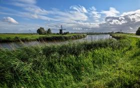 Картинка трава, поля, мельница, речка, Нидерланды, Edam