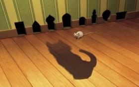 Обои кот, тень, мышь