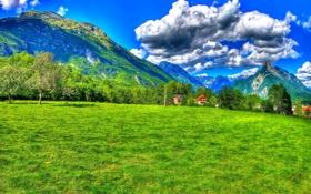 Обои облака, трава, небо, солнце, поле, Словения, деревья