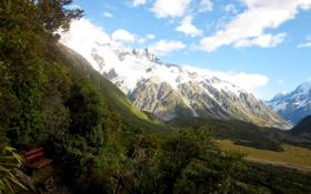 Обои долина, снежные, лавочка, Новая Зеландия, ущелье, Mount Cook National Park, кусты