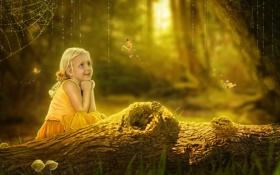 Обои лес, лето, бабочки, лягушка, девочка, ствол, бревно