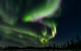 Обои пейзаж, звезды, панорама, северное сияние, зима, ночь, красота