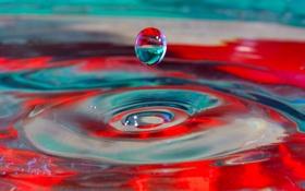 Обои капля, вода, цвет