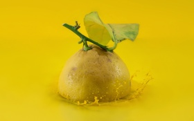 Обои фон, лимон, фрукт
