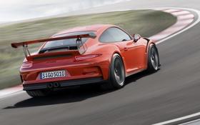 Обои Porsche, 911, порше, 991, 2015, GT3