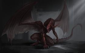 Картинка тьма, темно, крылья, hell dragon, дракон
