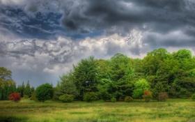 Обои Clouds, trees, nature, dark sky